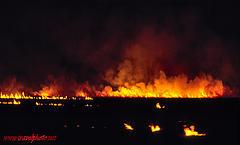 bush fire australia 12454324_7a9212a389_m